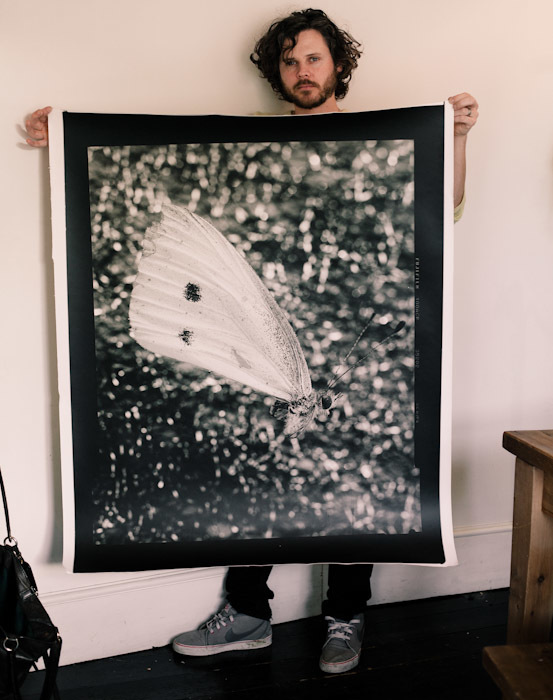"Mu son Luca and I caught this butterfly in Austria. It's the biggest print so far from my darkroom. 50""x42"""