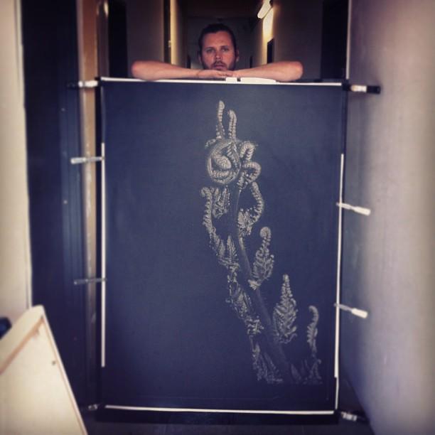 An unfurling fern - a New Zealand icon. #darkroom #caseymoorephotographer