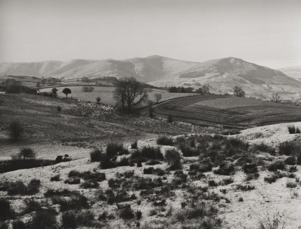Casey Moore Black and White Landscape-18.jpg