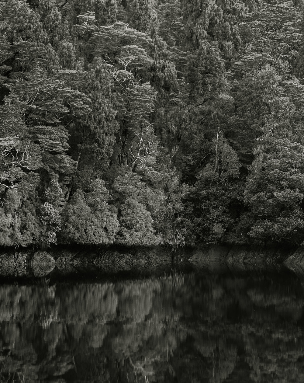 Casey Moore Black and White Landscape-32.jpg
