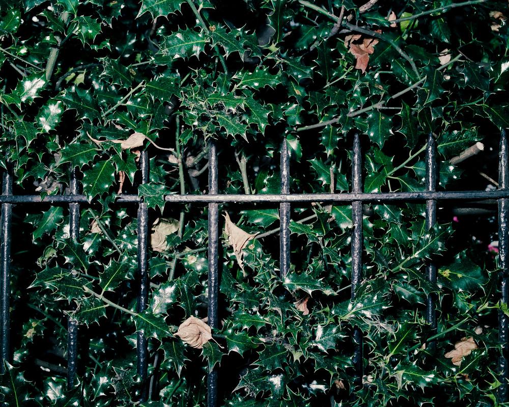 Shepherds Bush, London, England