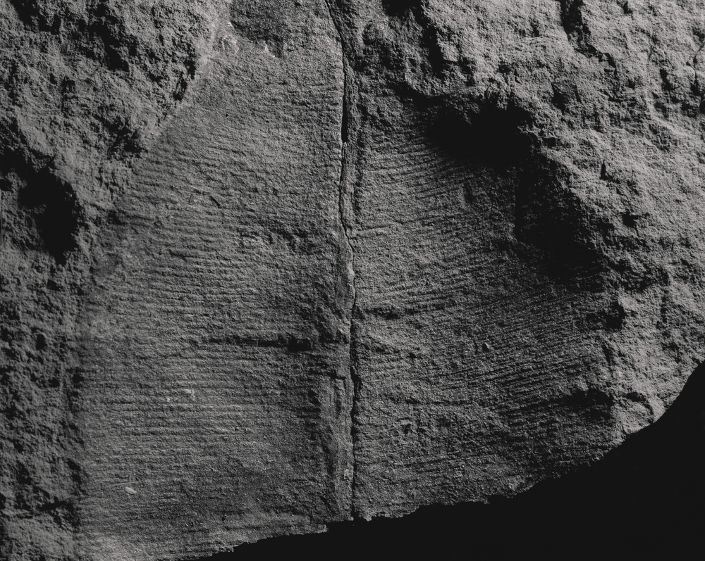 Casey Moore Natures Negatives Fossils-4.jpg