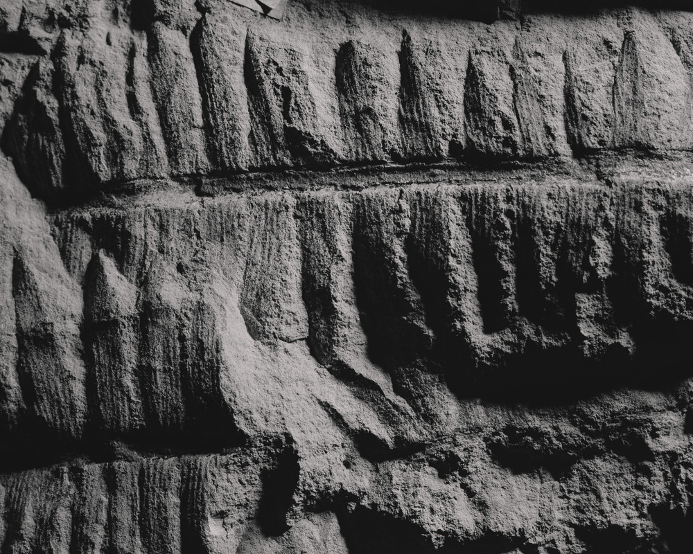 Casey Moore Natures Negatives Fossils-5.jpg