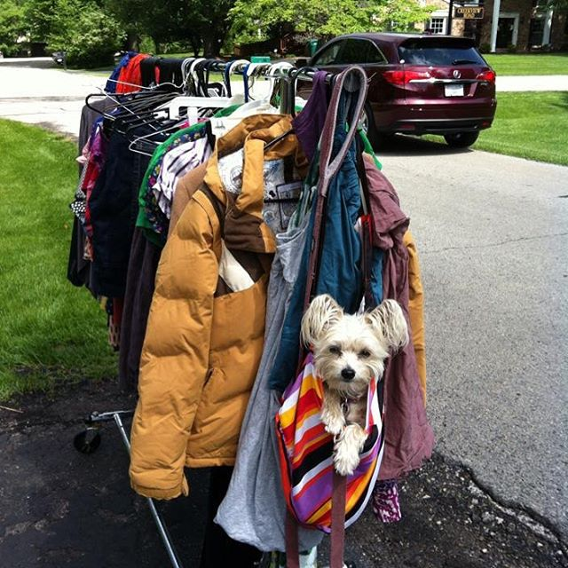 professional organizer, rachel and company, yard sales, rachel rosenthal
