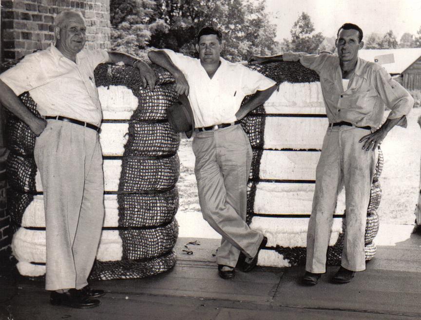 Cotton bales Mt. Carmel 1957
