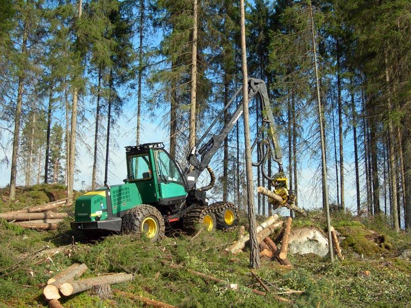 Timber Jack Harvester.jpg