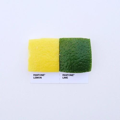 pantone-food-pairings5
