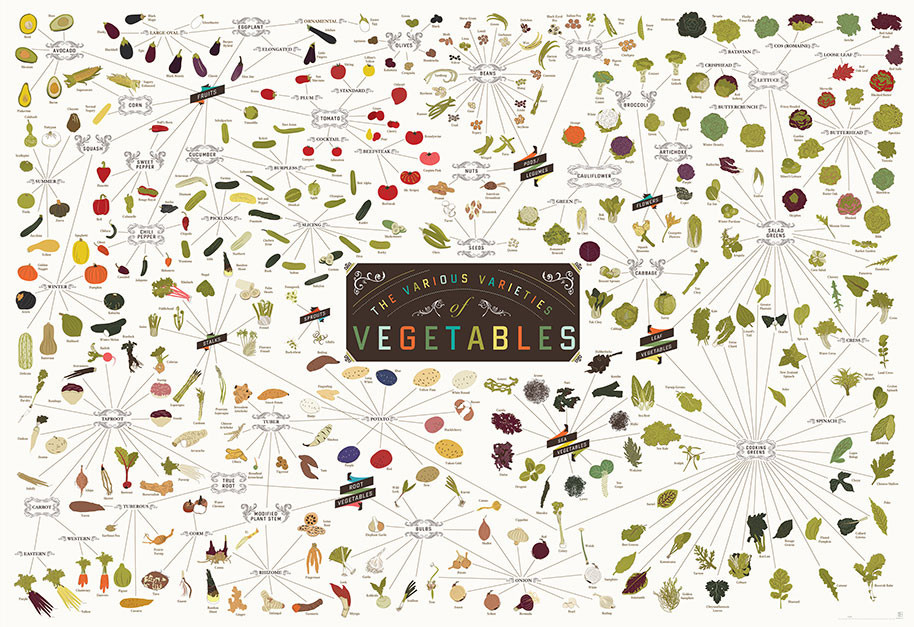 varieties-of-vegitables1