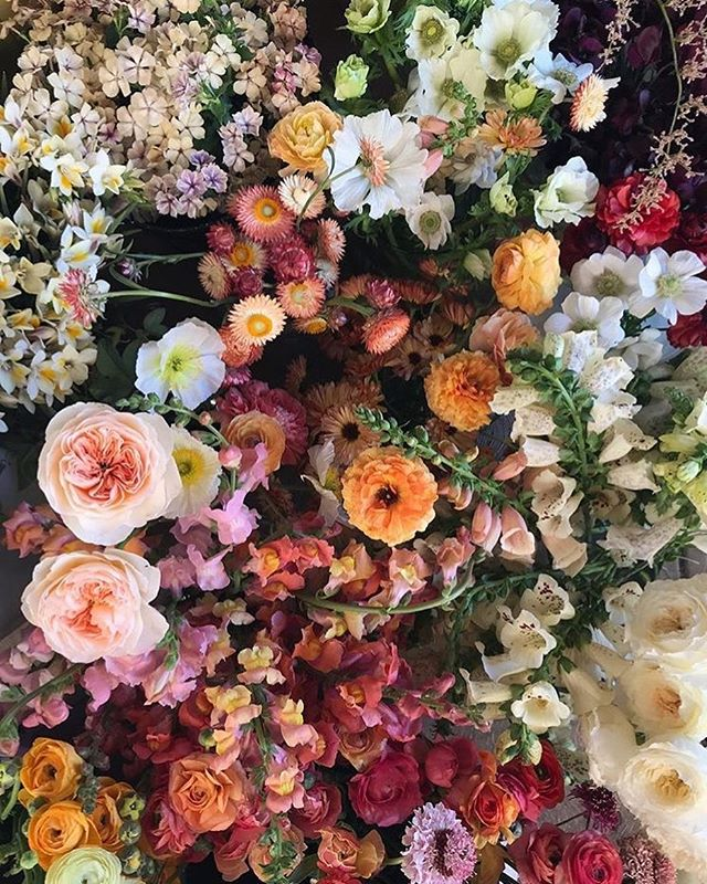 Floral fix via @lamusadelasflores