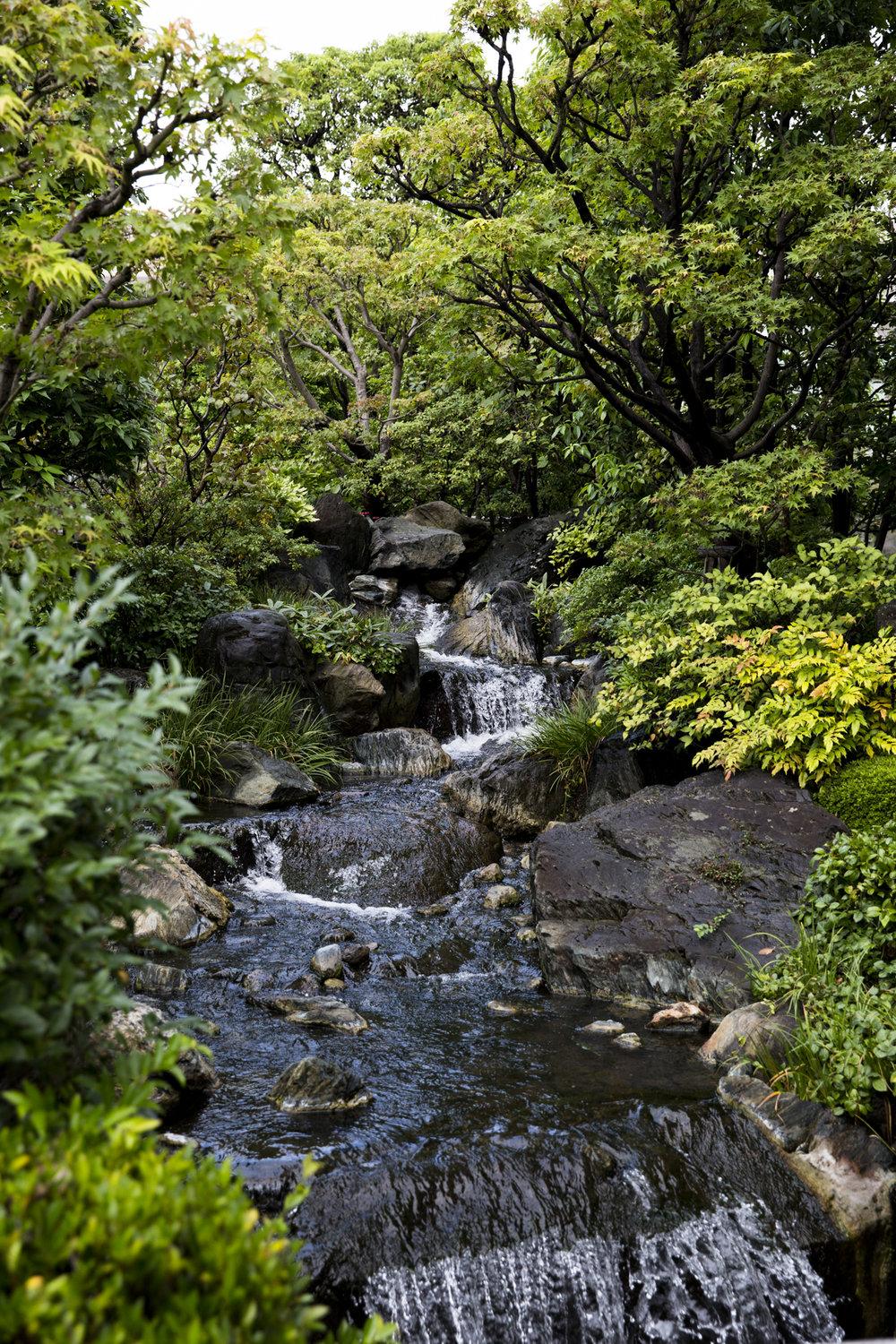 PERRU_P_JAPAN_01_19.jpg