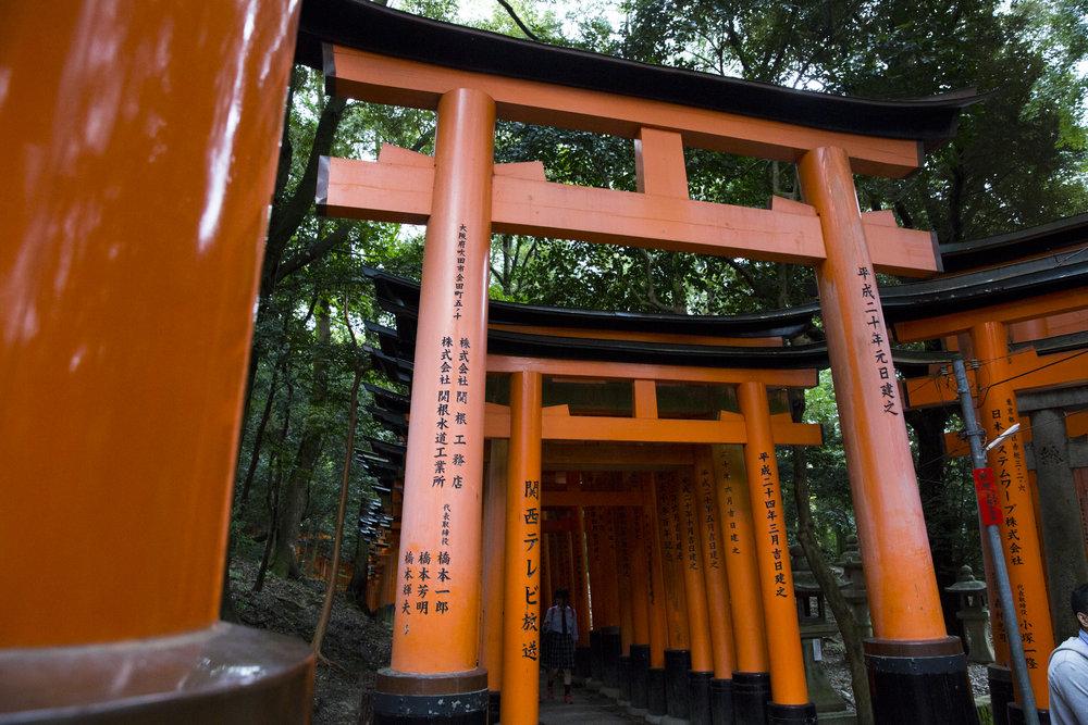 PERRU_P_JAPAN_01_42.jpg