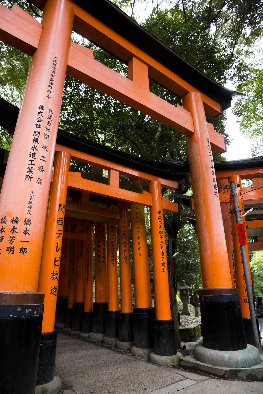 PERRU_P_JAPAN_01_44.jpg