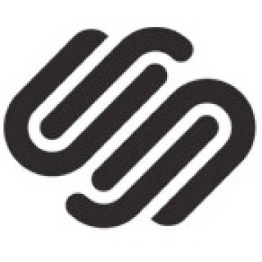 Squarespace_logo_small-380x380.jpeg