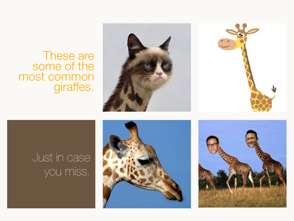 Giraffes English.009.jpg