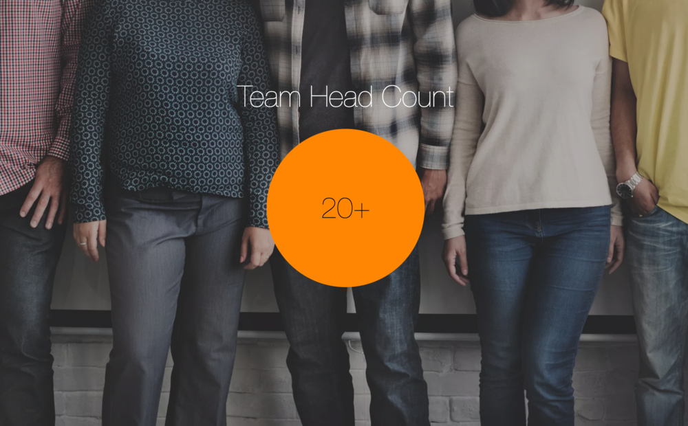 team-head-count