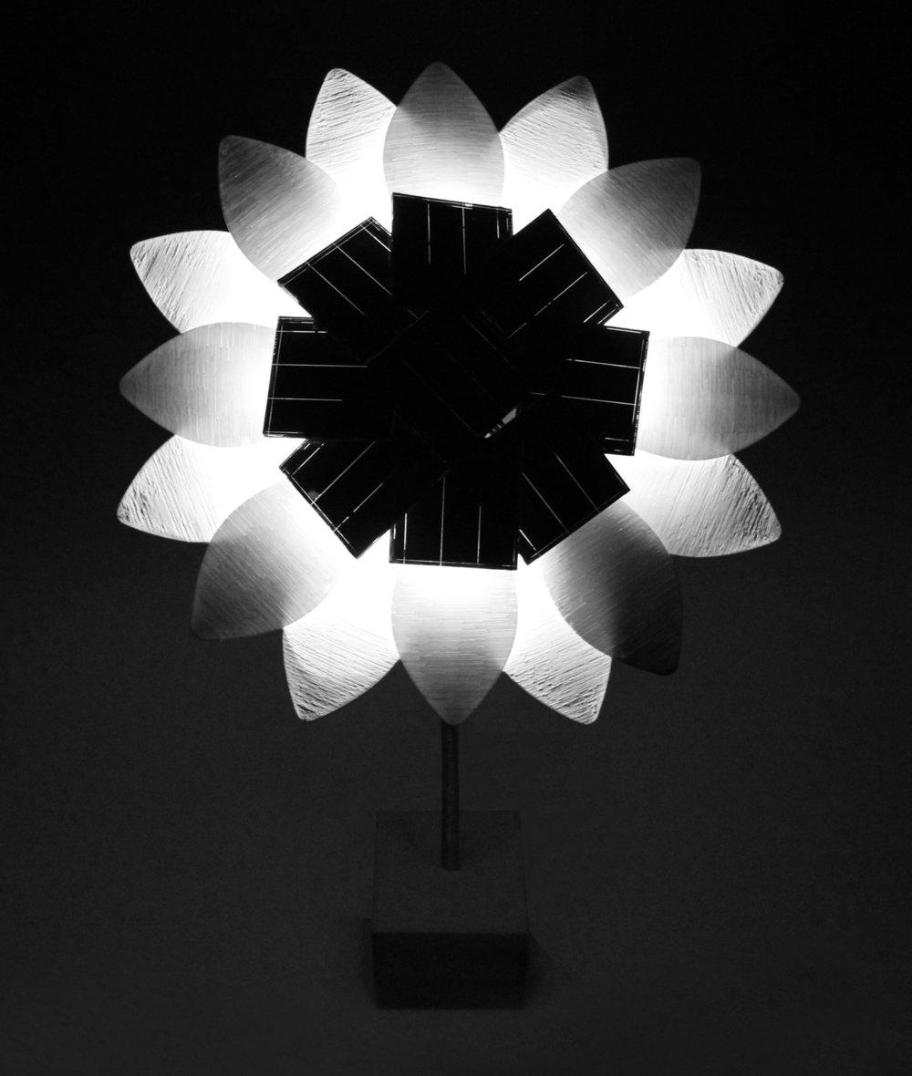 solar-flower-night.jpg