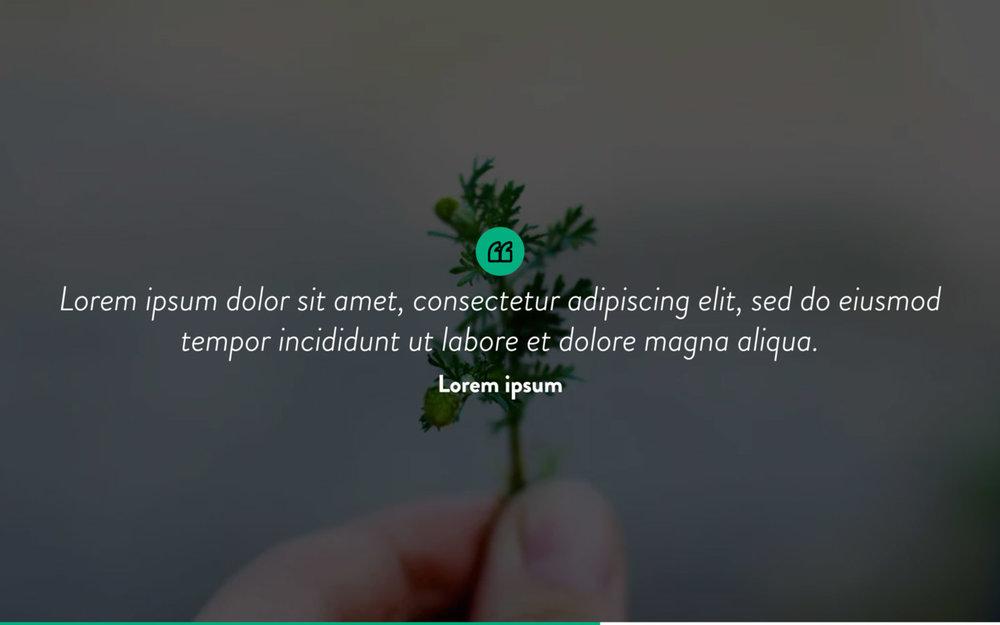 EcoGreen Template10.jpg