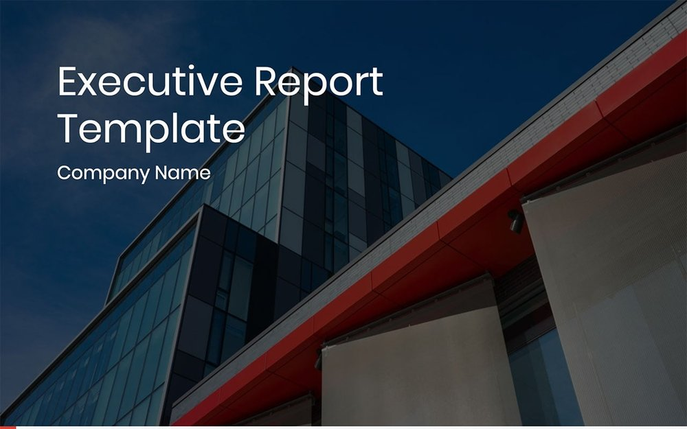 Executive Report -01.jpg
