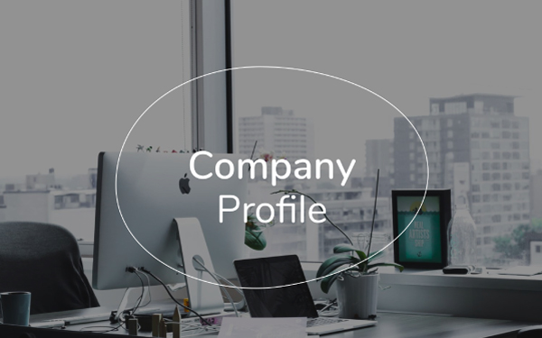 Company Profile Template (PDF and PPT Download) — Slidebean