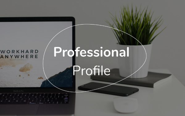 professional profile template free pdf ppt download slidebean