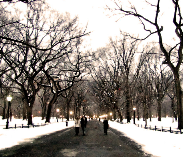 A day spent walking in  Central Park , enjoying the balmy New York winter.