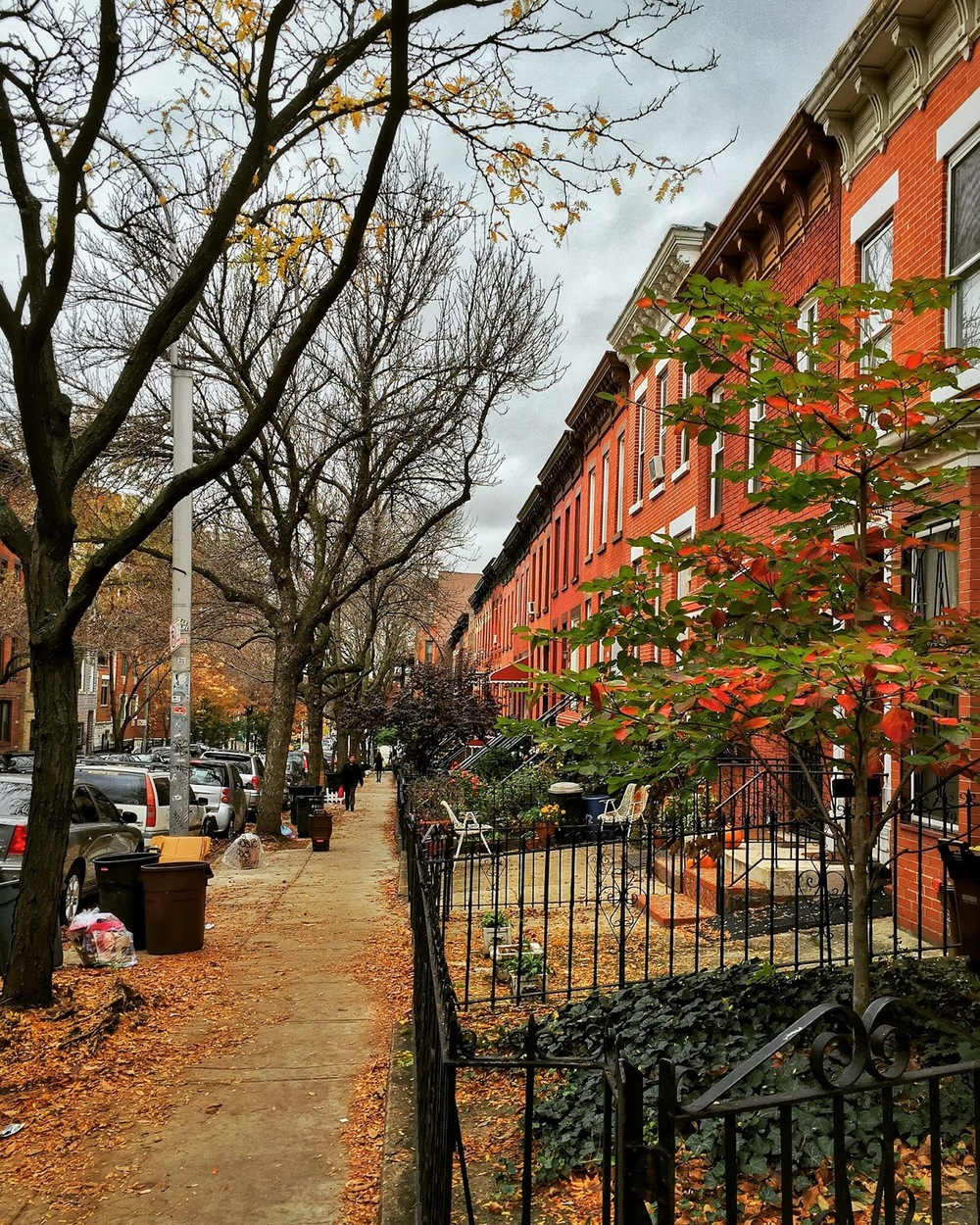 A typical street in Park Slope, Brooklyn.