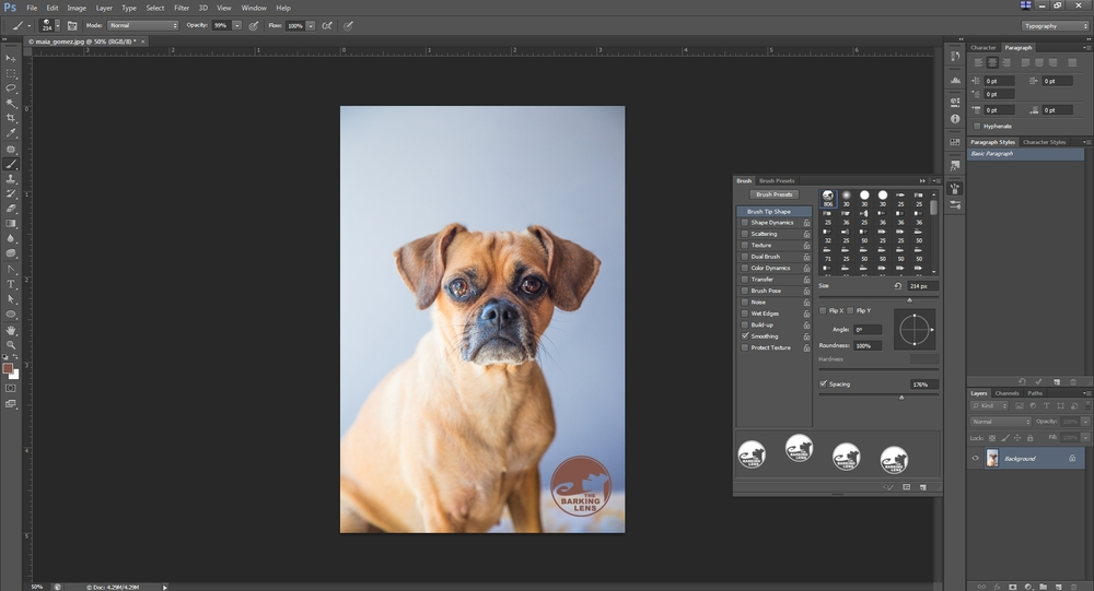 Creating a custom watermark in Photoshop