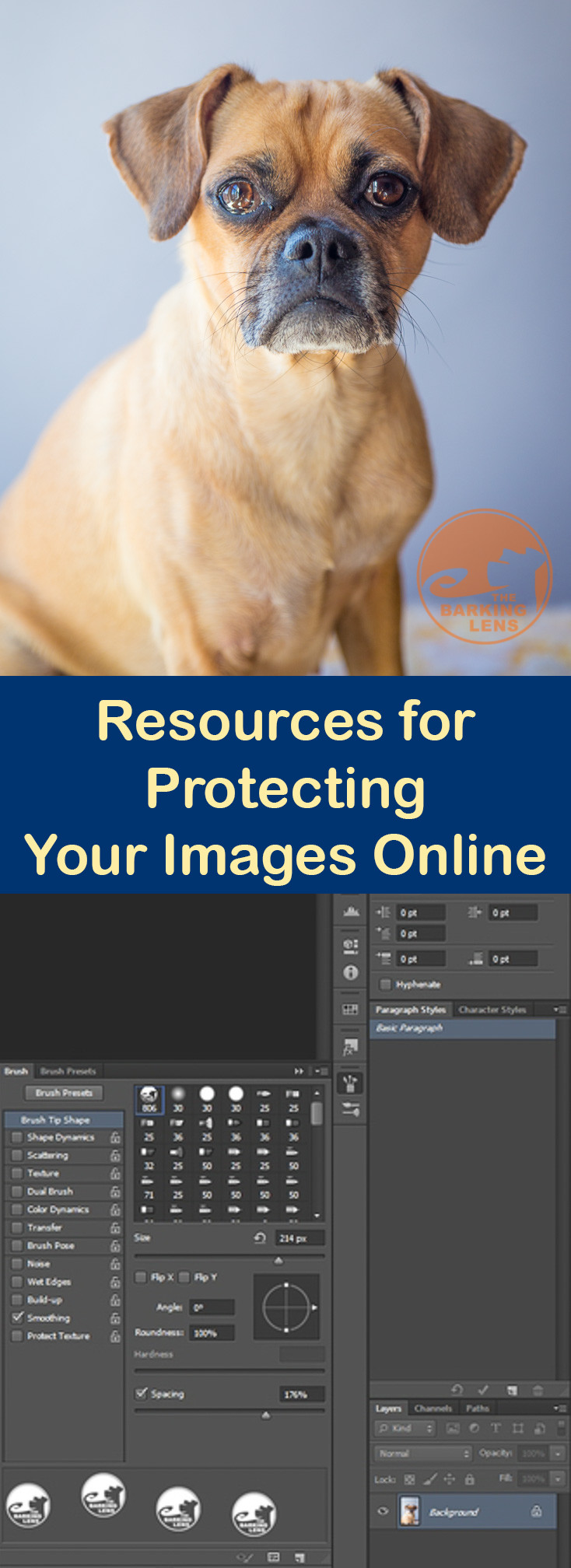 Resources for Protecting Your Images Online
