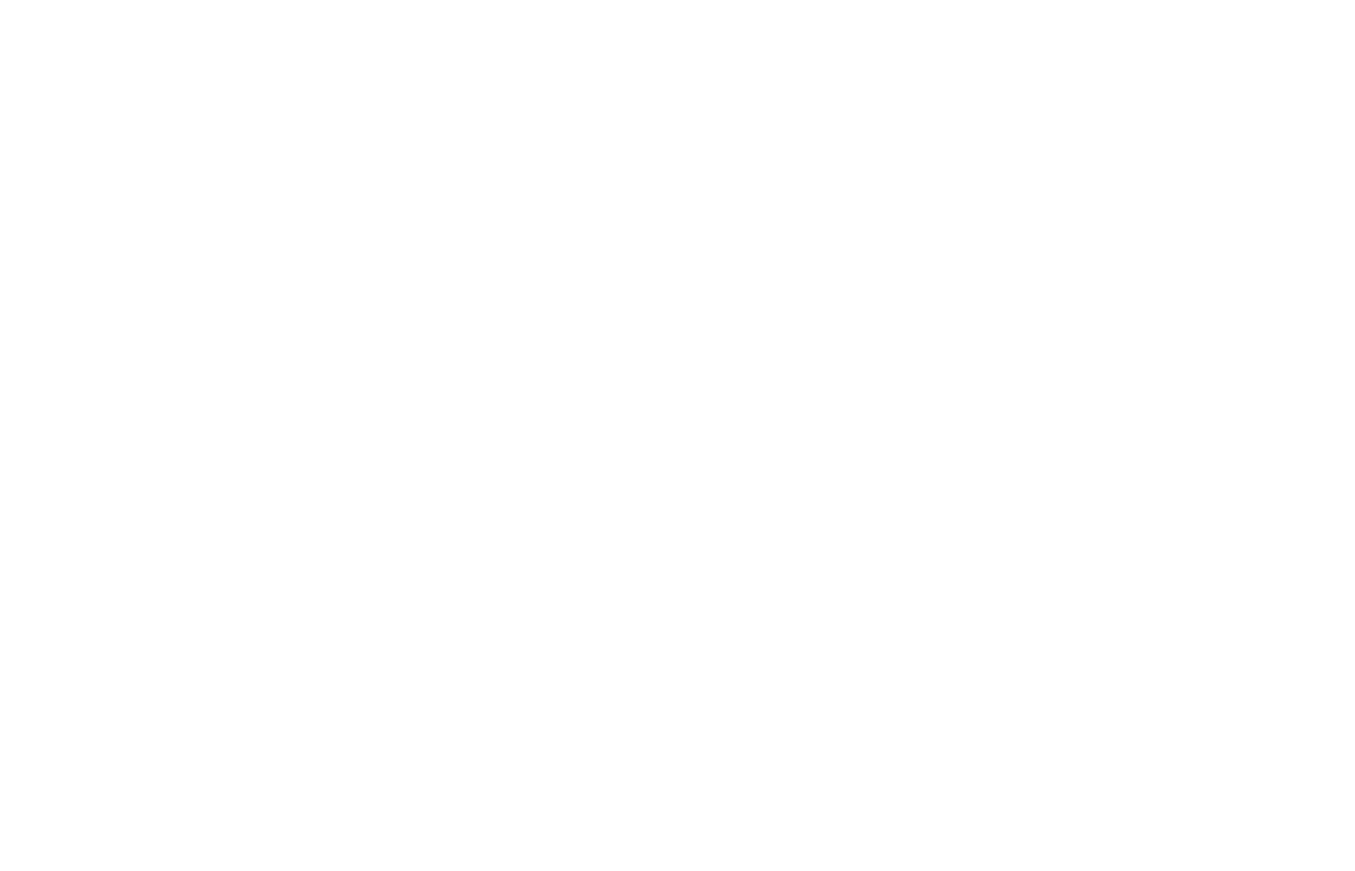 THE BAD JONES