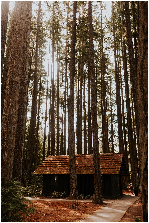 Ashley Peter Kitsap State Park Pouslbo Washington Outdoor DIY Wedding (1).jpg