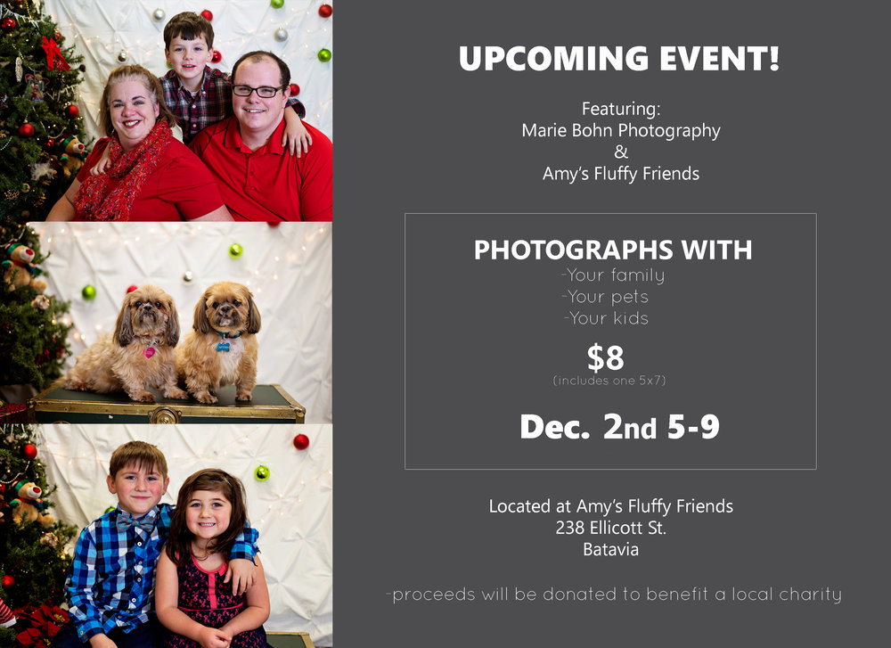 Western NY Family photographer