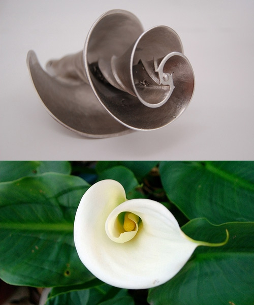 Pax Technologies took the calla lily's shape as inspiration for a water mixer. The flower's centripetal spirals assist with the ideal flow of liquid, which allows their design to mix more liquid with a fraction of the horse power usually required. Using nature's perfected designs helps minimize energy requirements.    Image of impeller via   PAX Scientific  , all rights reserved; Image of calla lily via   the equinest