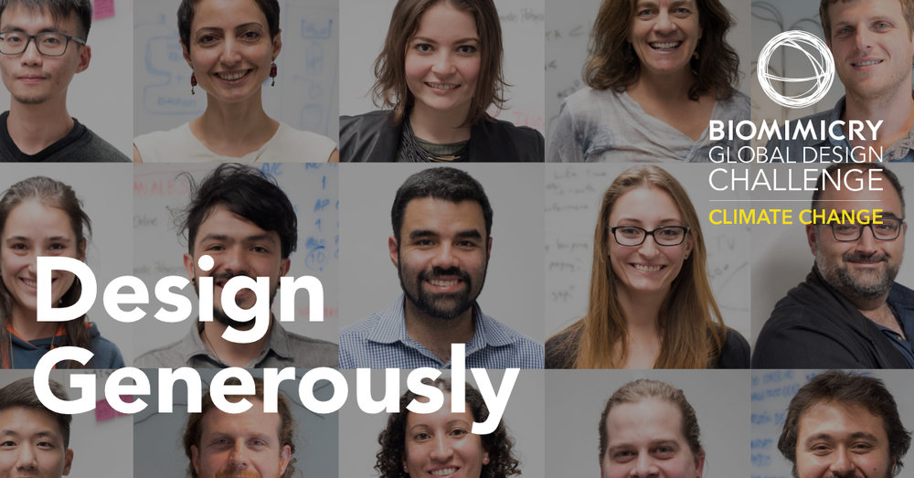 Biomimicry Global Design Challenge Finalists 2018