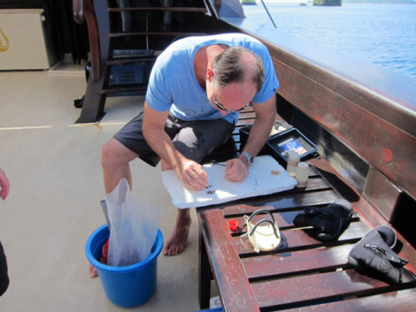 Dr Mark Erdmann logs his findings after a dive