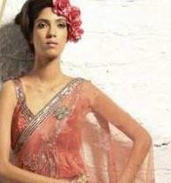 saree online - bollywood fashion.JPG
