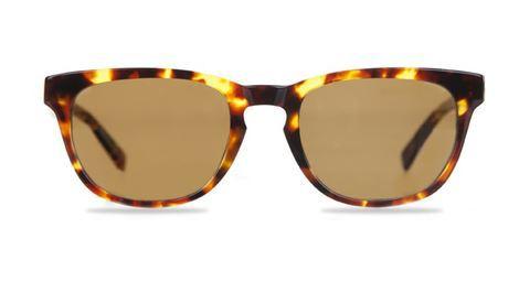 Bailey Nelson - womens sunglasses.JPG