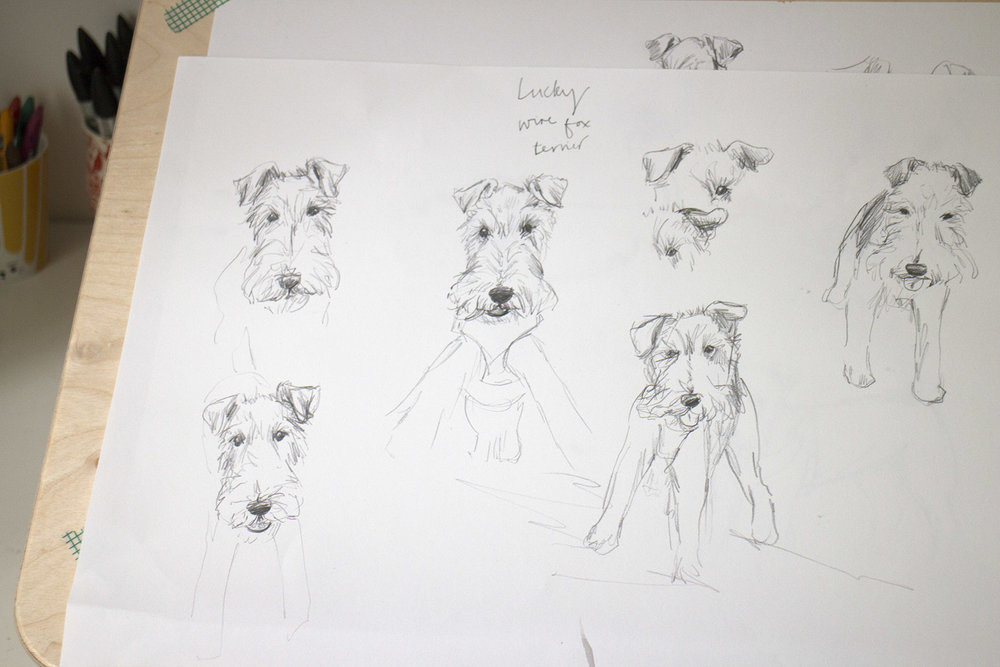 pet portrait sketches.jpg