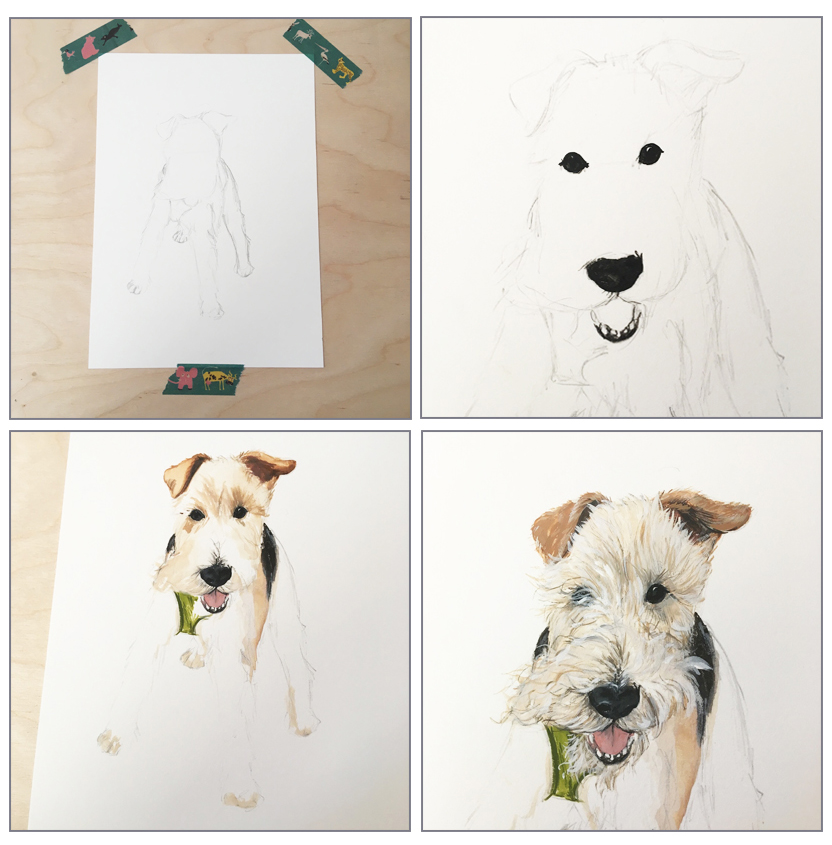 pet portrait progress.jpg