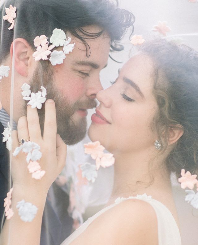 Blythe and her mother sewed each of these flowers onto her veil - a beautiful, hazy aura for their newlywed portraits |  Venue: Haywood Hall  Officiant @erinjbeall Hair + MUA : Hannah Rubright DJ @shaun_fuller Catering: Above and Beyond Catering Cake @cakesbychloe  #haywoodhall #vintagewedding #blytheandgary #minavonfphotography #northcarolinawedding #northcarolinaweddingphotographer #weddingphotography #raleighwedding #raleighweddingphotographer