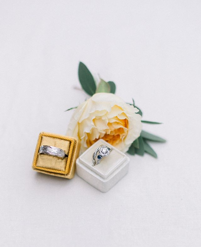 I felt a few looks on my back as I was photographing these rings (and one gorgeous flower) in the middle of a downtown Raleigh sidewalk, surrounded by the racing energy of a saturday evening in the city.  You go where the natural light is!  Even if it is a sidewalk full of people. . . . #downtownraleighwedding #cormuseum @cormuseum  #minavonfphotography #northcarolinawedding #northcarolinaweddingphotographer #weddingphotography #raleighwedding #raleighweddingphotographer