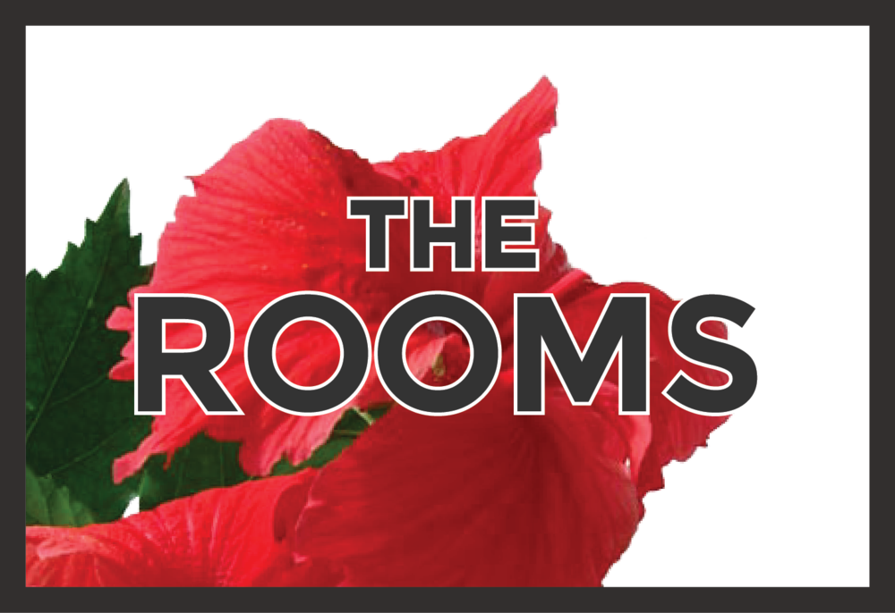 the-rooms.png