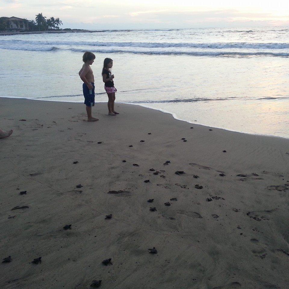 kids on beach with turtles.jpg