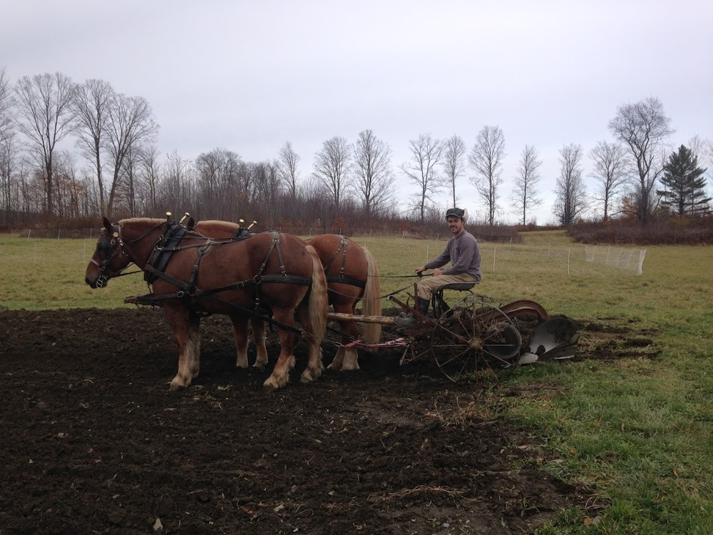 Bob and Ted finishing up the fall plowing