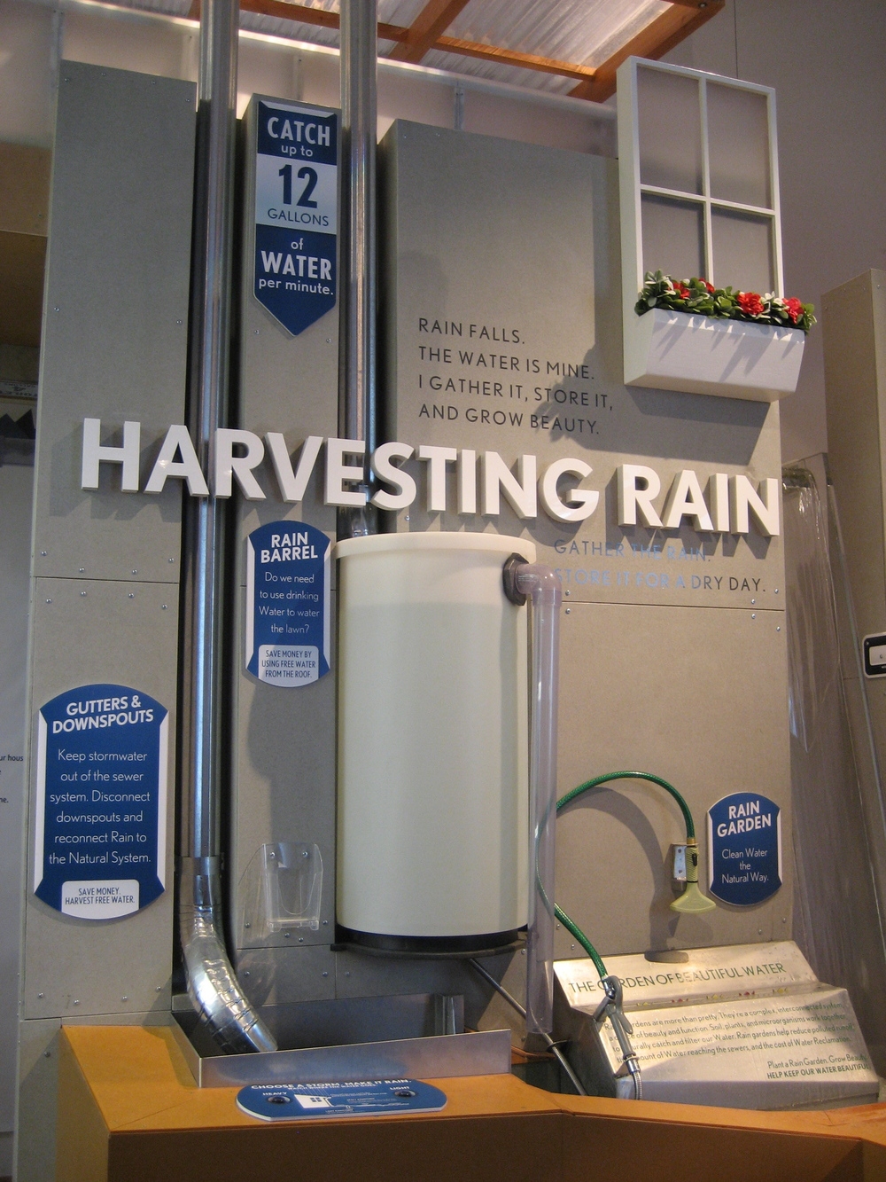 discovery world harvesting rain.jpg