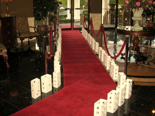 Red Carpet, Rope and Stanchions