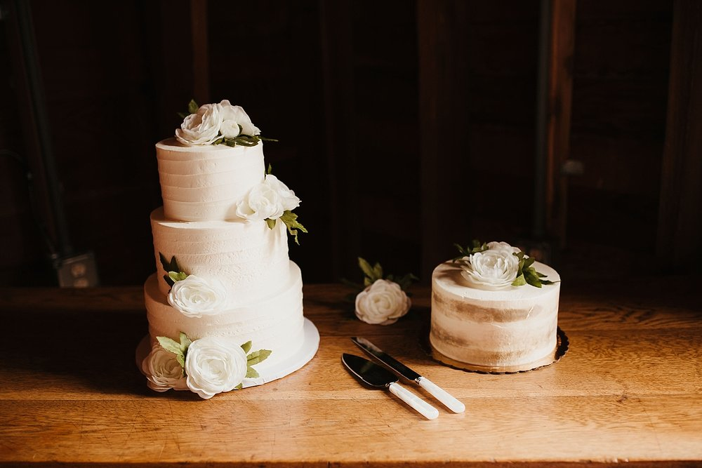 Willapa-Hills-Farm-wedding_0052.jpg