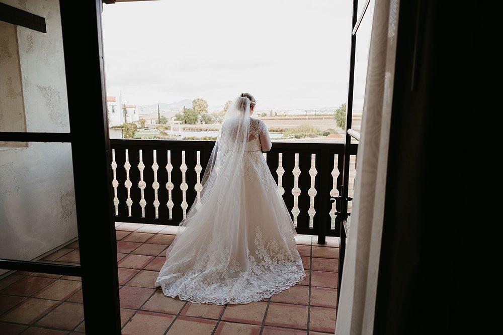 Lorimar-Winery-Wedding-23.jpg