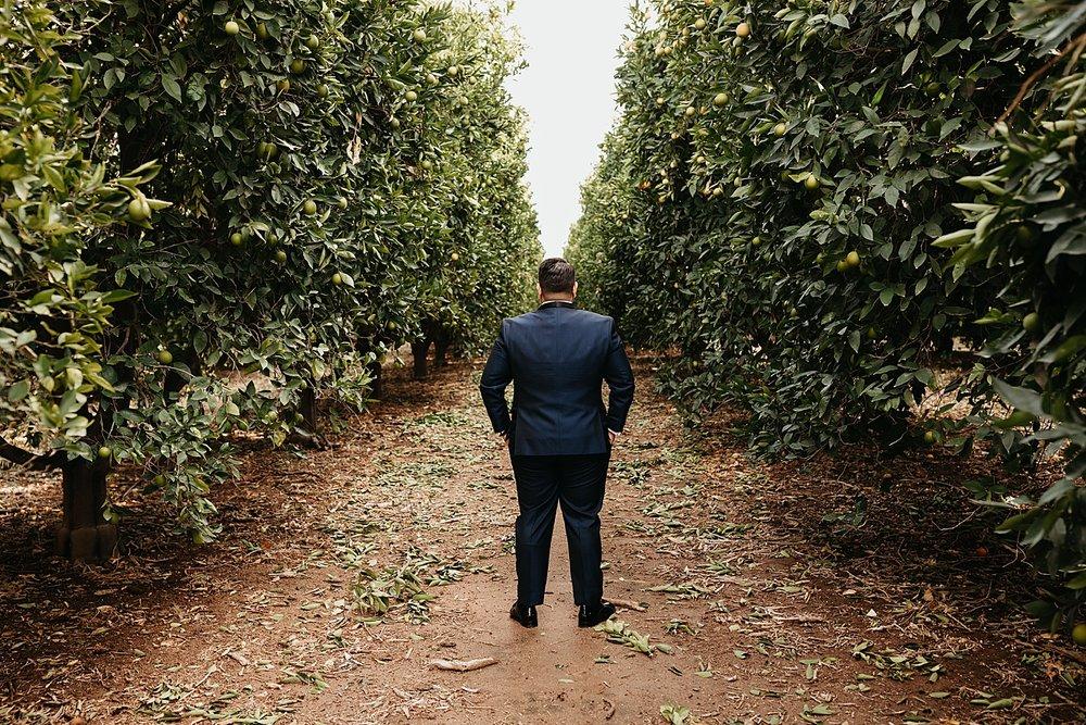 Lorimar-Winery-Wedding-39.jpg