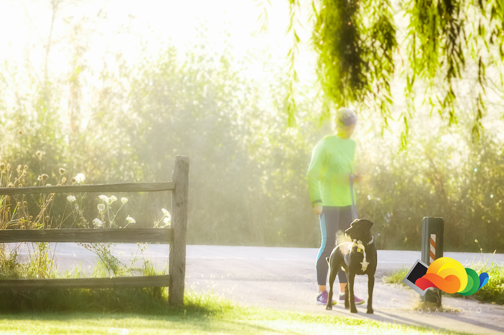 Pre-Run and race featuring jogger and dog getting ready for festivites. ©Sosaphoto2015