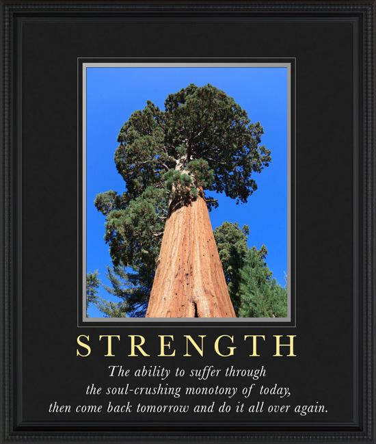 9. strength.jpg